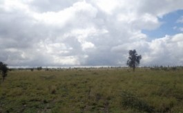 Land-In-Kitengela